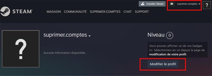 Modifier le profil supprimer compte Steam