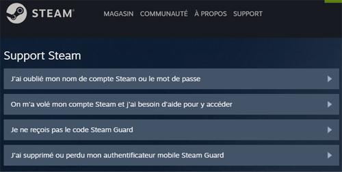 Support Steam